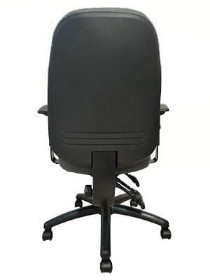 orthopedic chair back